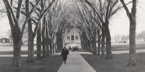 Photo of Colorado State University Oval